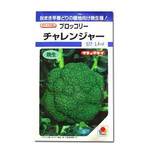 野菜の種/種子 チャレンジャー・ブロッコリー 1.4ml(メール便発送)タキイ種苗|vg-harada