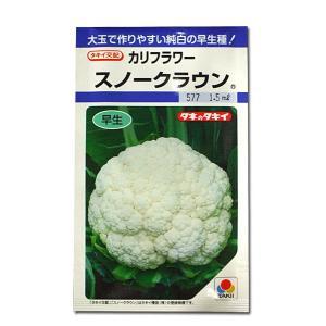 野菜の種/種子 スノークラウン・カリフラワー 1.5ml (メール便可能)タキイ種苗|vg-harada