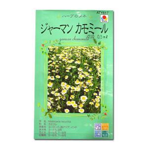 ハーブの種 ジャーマンカモミール・かみつれ 0.5ml(メール便可能)|vg-harada
