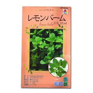 ハーブの種 レモンバーム・せいようやまはっか 0.5ml(メール便可能)|vg-harada