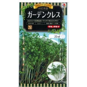 ハーブの種 ガーデンクレス・こしょうそう 20ml(メール便発送)|vg-harada
