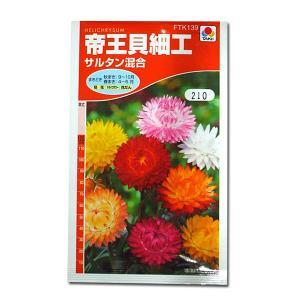 花の種 帝王貝細工[サルタン混合] 0.6ml(メール便可能)|vg-harada