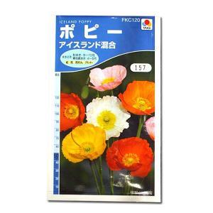 花の種 ポピー[アイスランド混合] 0.3ml(メール便可能)|vg-harada
