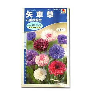 花の種 矢車草[八重咲混合] 1.5ml(メール便可能)|vg-harada
