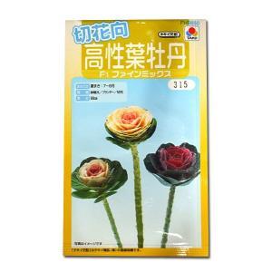 花の種 高性葉牡丹[F1ファインミックス] 0.5ml(メール便可能)|vg-harada