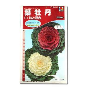 花の種 葉牡丹[F1はと混合] 0.5ml(メール便可能)|vg-harada