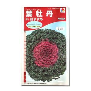 花の種 葉牡丹[F1紅すずめ] 0.5ml(メール便可能) vg-harada