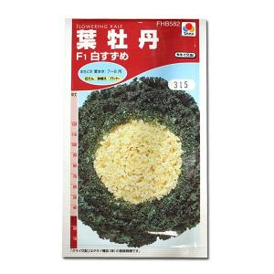 花の種 葉牡丹[F1白すずめ] 0.5ml(メール便可能) vg-harada