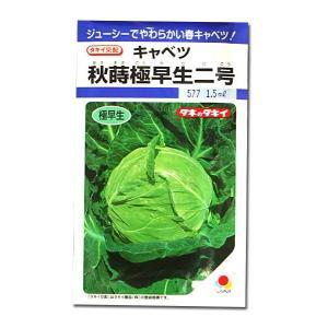 野菜の種/種子 秋蒔極早生二号・キャベツ 1.5ml (メール便可能)タキイ種苗|vg-harada