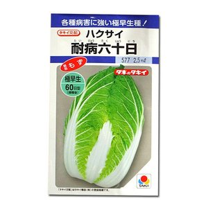 野菜の種/種子 耐病六十日・ハクサイ 2.5ml (メール便可能)タキイ種苗|vg-harada