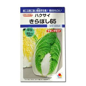 野菜の種/種子 きらぼし65・ハクサイ 0.9ml (メール便可能)タキイ種苗|vg-harada
