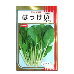 野菜の種/種子 はっけい・コマツナ 20ml(メール便発送)サカタのタネ 種苗|vg-harada