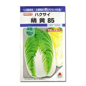 野菜の種/種子 晴黄85・ハクサイ 0.9ml (メール便可能)タキイ種苗|vg-harada