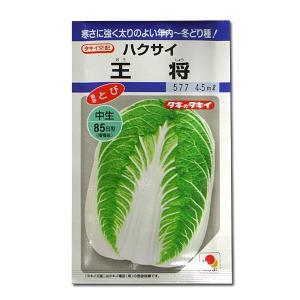 野菜の種/種子 王将・ハクサイ 4.5ml (メール便可能)タキイ種苗|vg-harada