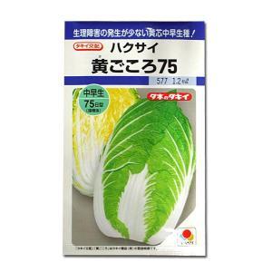 野菜の種/種子 黄ごころ75・ハクサイ 1.2ml (メール便可能)タキイ種苗|vg-harada
