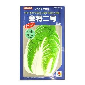 野菜の種/種子 金将二号・ハクサイ 20ml (メール便可能/大袋)タキイ種苗|vg-harada