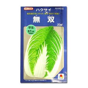 野菜の種/種子 無双・ハクサイ・白菜 20ml(メール便発送/大袋)タキイ種苗|vg-harada
