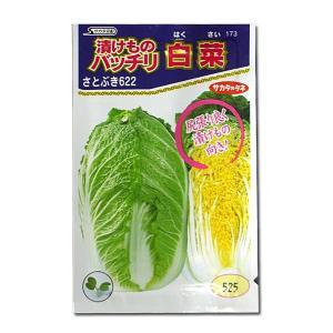 野菜の種/種子 さとぶき622・ハクサイ 1.3ml(メール便可能)サカタのタネ 種苗|vg-harada