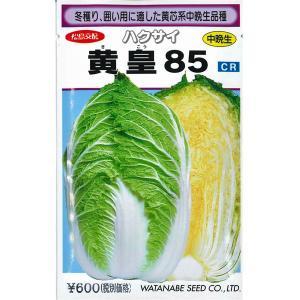 野菜の種/種子 黄皇85・ハクサイ 1.3ml (メール便発送)|vg-harada