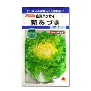 野菜の種/種子 新あづま・山東ハクサイ 2.5ml (メール便可能)タキイ種苗|vg-harada