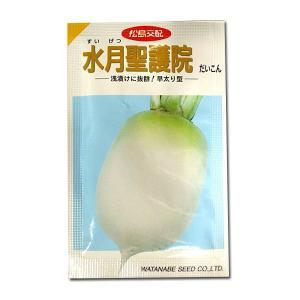 野菜の種/種子 水月聖護院・だいこん 20ml (メール便可能)|vg-harada