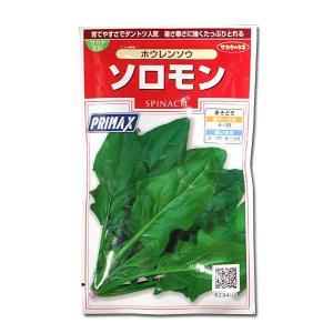野菜の種/種子 ソロモン・ほうれんそう 30ml (メール便発送)|vg-harada