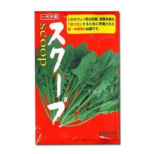 野菜の種/種子 スクープ・ほうれんそう 40ml (メール便可能)|vg-harada