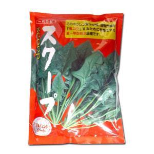 野菜の種/種子 スクープ・ほうれんそう 3万粒  (大袋)|vg-harada