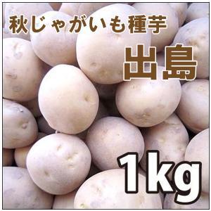 野菜・種/苗 [秋じゃがいも種芋]じゃがいも種芋 出島・生もの種 量り売り1kg |vg-harada