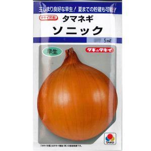 野菜の種/種子 ソニック・タマネギ 5ml (メール便可能)タキイ種苗|vg-harada