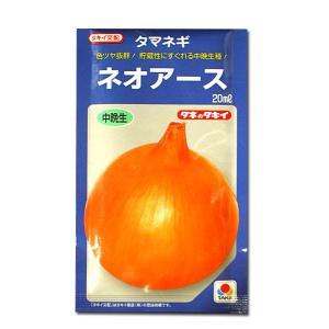 野菜の種/種子 ネオアース・タマネギ 20ml (メール便可能)タキイ種苗|vg-harada