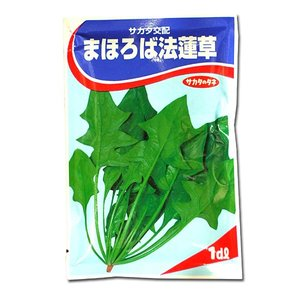 野菜の種/種子 まほろば法蓮草・ほうれんそう 1dl (メール便可能)サカタのタネ|vg-harada