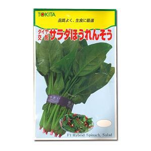 野菜の種/種子 サラダほうれんそう 50ml (メール便可能)|vg-harada