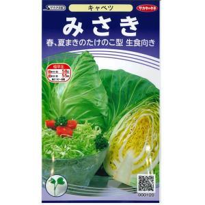 野菜の種/種子 みさき・キャベツ 1ml(メール便発送)サカタのタネ 種苗|vg-harada