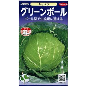 野菜の種/種子 グリーンボール・キャベツ 1.3ml(メール便発送)サカタのタネ 種苗|vg-harada