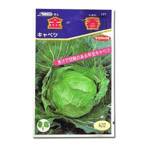野菜の種/種子 金春・キャベツ 1ml(メール便発送)サカタのタネ 種苗|vg-harada