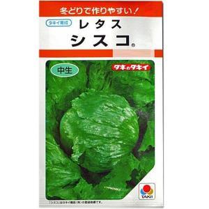 野菜の種/種子 シスコ・レタス 2ml (メール便可能)タキイ種苗|vg-harada