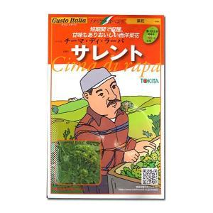 野菜の種/種子 サレント・チーマ ディ ラーパ/菜花・イタリア野菜 80粒 (メール便可能)|vg-harada