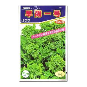 野菜の種/種子 早陽一号・はなな 9.5ml(メール便発送)サカタのタネ 種苗 vg-harada