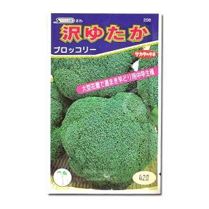 野菜の種/種子 沢ゆたか・ブロッコリー 1.1ml (メール便発送)|vg-harada
