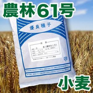野菜の種/種子 小麦・農林61号 1kg|vg-harada