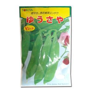 野菜の種/種子 ゆうさや・えんどう 50ml (メール便可能)|vg-harada