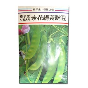 野菜の種/種子 赤花絹莢豌豆・つるありえんどう 1dl (メール便可能) vg-harada