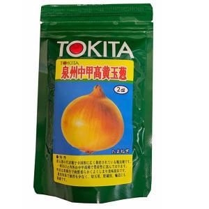 野菜の種/種子 泉州中甲高・タマネギ 2dl缶入  (大袋)|vg-harada