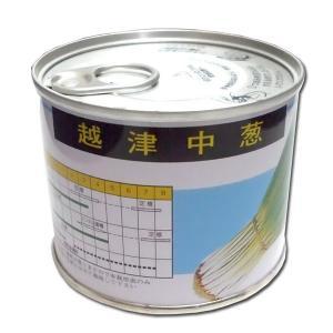 野菜の種/種子 越津中葱・ねぎ 2dl缶入  (大袋)|vg-harada