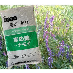 まめ助・ヘアリーベッチ 1kg 緑肥/飼料/牧草作物/種|vg-harada