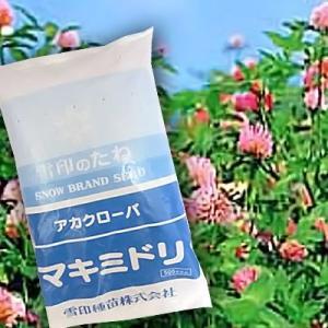 赤クローバ マキミドリ 500g 緑肥/飼料/牧草作物/種|vg-harada