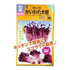 スプラウトの種 サンゴ かいわれ大根 35ml(メール便発送)|vg-harada