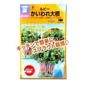 スプラウトの種 ルビー かいわれ大根 50ml(メール便発送)|vg-harada