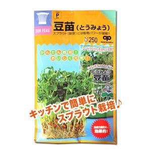 スプラウトの種 豆苗(とうみょう)60ml(メール便発送)|vg-harada